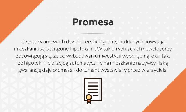 Informacje dotyczące tego, czym jest promesa