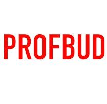 zdjęcie do W dzisiejszym artykule prezentujemy informacje dotyczące dewelopera działającego pod nazwą Profbud.